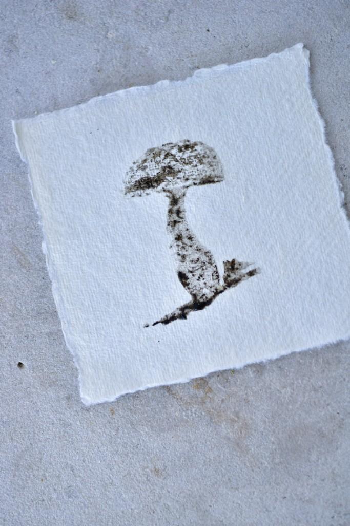 Schopftintling Tinte